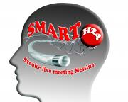 SMART-H24: Stroke management and advanced revascularization therapy H24